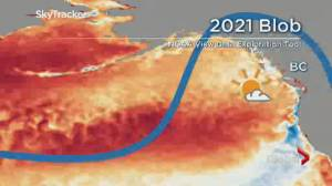 What you need know about B.C.'s up coming weather season (01:45)