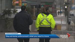 Coronavirus: Police not authorized to stop people randomly under Ontario's stay-at-home order (02:24)