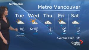 B.C. evening weather forecast: March 29 (01:54)