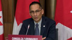 Coronavirus: 'Every Canadian' should be able to get a COVID-19 vaccine next year, health official says (01:00)