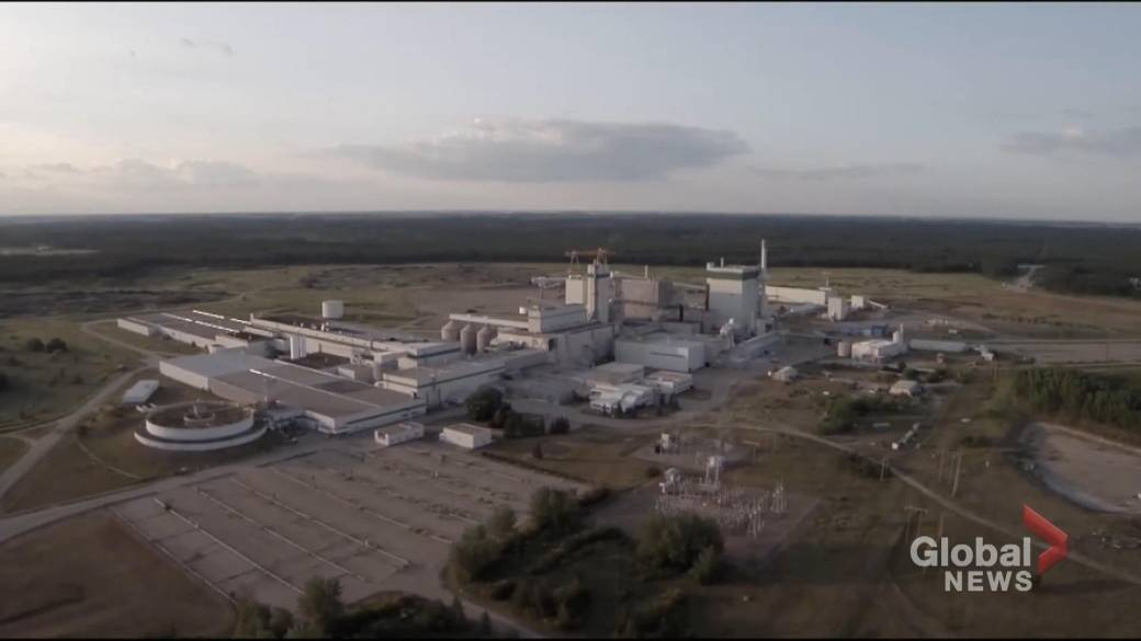 Click to play video: 'Prince Albert, Sask. pulp mill receives $600K injection from Paper Excellence'