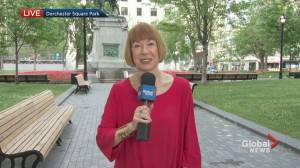 Global News Morning weather forecast: June 9, 2021 (01:03)