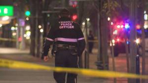 Police investigate series of violent attacks in downtown Calgary (01:51)