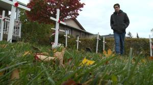 Oshawa teen honours veterans with Remembrance lawn display