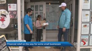 Ontario budget provides support for small businesses, but some excluded (02:34)