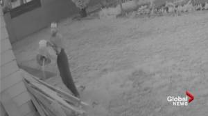 Delta Police release video of arson suspect (00:50)