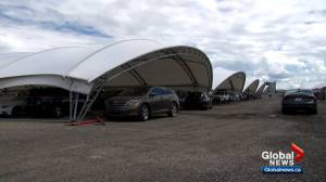 'A huge lifesaver': protective tents and nets save car dealerships from hail damage
