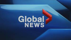 Global News at 5: Nov 1 Top Stories