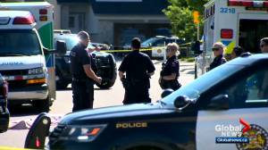 Calgary on track to have worst year in terms of shootings in 5 years: police chief (02:15)