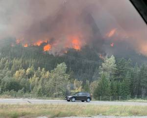 Smoke-filled summers the norm for Alberta: wildfire expert (01:40)