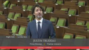 Trudeau defends timing of formal opposition to Line 5 pipeline shutdown demand (00:57)