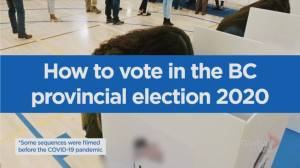How do you vote in the upcoming B.C. provincial election?