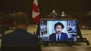 Finance committee grills Trudeau during WE Charity testimony