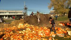 Common Roots Urban Farm pumpkin smash