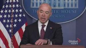 U.S. Homeland Security secretary says department will look into possible disbanding of horse patrol (00:56)