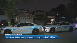 Son facing murder charge in elderly mother's death in Mississauga