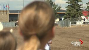 First horse racing event of the year kicks off in Lethbridge this weekend (01:53)
