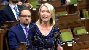 Conservative MP says 'Liberals should be ashamed of themselves,' asks if Trudeau will 'back off' from election threat (01:13)