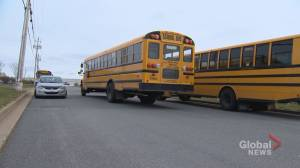 3 companies hired to provide busing services for Halifax schools
