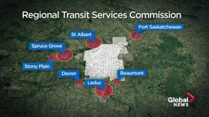 Regional transit in greater Edmonton area could arrive in 2022 (01:49)