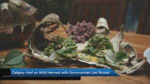 Calgary chef joins Survivorman Les Stroud for new TV show (05:06)