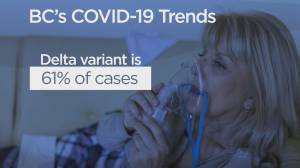 B.C. officials to release August long weekend COVID-19 case numbers (03:36)