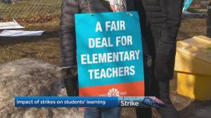 How do strikes impact students' learning?