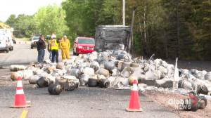 No injuries in Debert truck fire