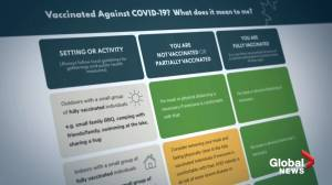 COVID-19: Experts weigh in on new federal guidelines for vaccinated people (02:07)