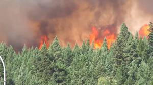 Global BC at 60: Costly 2017 B.C. wildfire season (02:15)