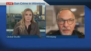 Gun crimes in Winnipeg