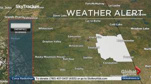 Edmonton Weather Forecast: Jan. 22