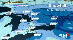 Global Toronto Weather Jan. 18