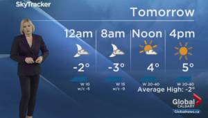 Calgary News Hour Weather: Sunday, Jan. 26