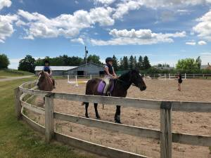 Equestrian sleep-away camp in Bethany pivots to lessons during COVID-19