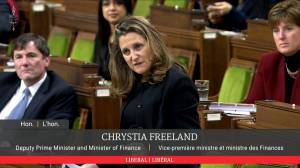 Freeland says federal economic update coming by month's end (00:35)