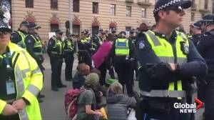 Climate protesters in Melbourne arrested by police following sit-in