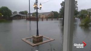 Tropical storm Imelda floods homes in Nederland, Texas