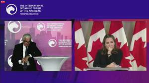 U.S. election: Freeland says Canada prepared for any outcome (04:13)