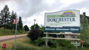 Tourism operators in Dorchester feeling shackled amid COVID-19