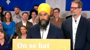 NDP government would support municipalities' decision on possible firearms ban: Singh