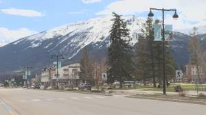 Alberta tourism industry report highlights urgent need for help