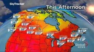 Winnipeg weather outlook: Aug. 5 (01:38)