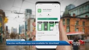 Ontario COVID-19 vaccine verification app now available for download (01:12)