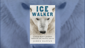 New book details the plight of polar bears (04:18)
