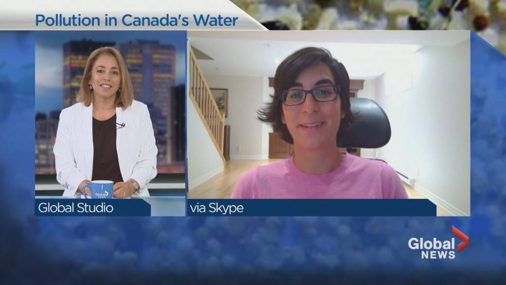 Click to play video: 'Studying plastic pollution in Canada's waters'