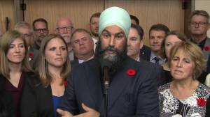 Singh blames 'fear-based voting' for losses in Ontario