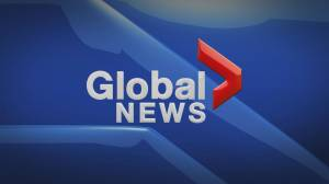 Global News Hour at 6 Edmonton: Nov. 22 (19:40)
