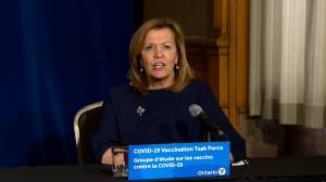 Coronavirus: Ontario officials comment on high COVID-19 case numbers despite lockdowns (02:34)