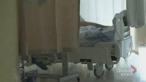 Nova Scotia advocates urge Ottawa to fulfill election promise to extend EI sickness benefit   Watch News Videos Online